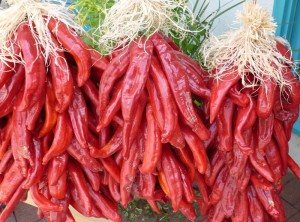 Making a New Mexico Red Chile Ristra